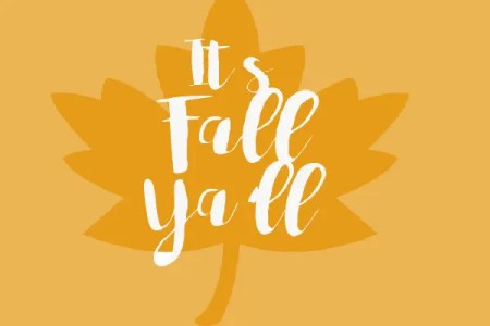 It's Fall Ya'll!  All things Fall: Party Edition