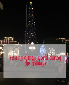 Visitin Disney World During The Holidays