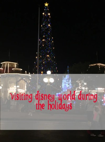 Visitin Disney World During The Holidays