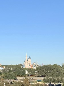 Magic Kingdom View From Contemporary