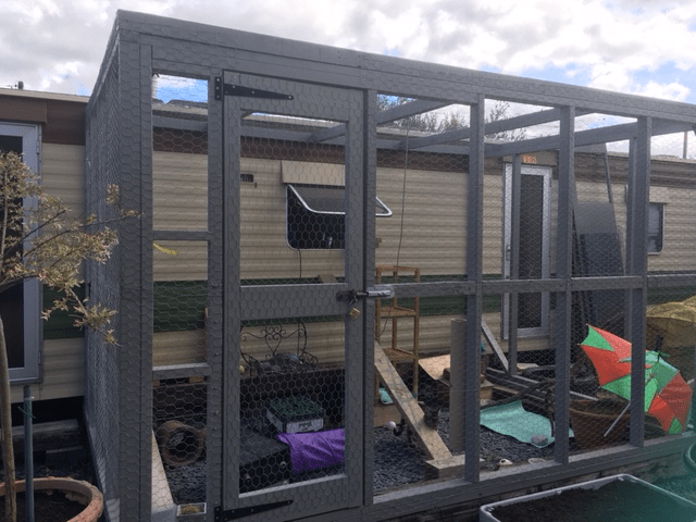 what is a catio cat enclosure