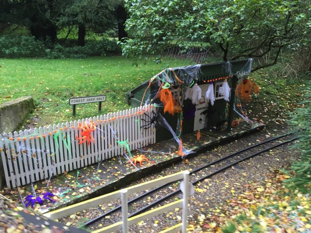 Halloween Train Deep Forest Halt