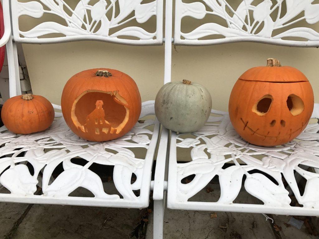 Pumpkins Halloween Half Term