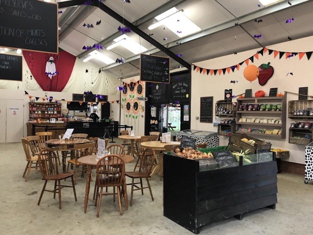 Pumpkin Picking In Essex tea barn