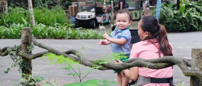 HELPING HANDS FOR MOMMIES ABROAD