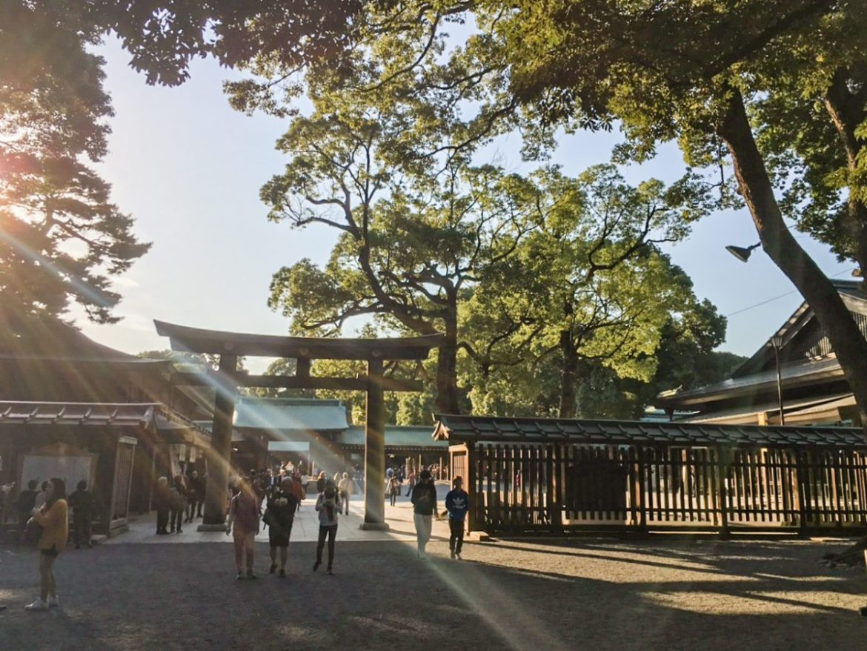 Accessible Yoyogi Park in Tokyo