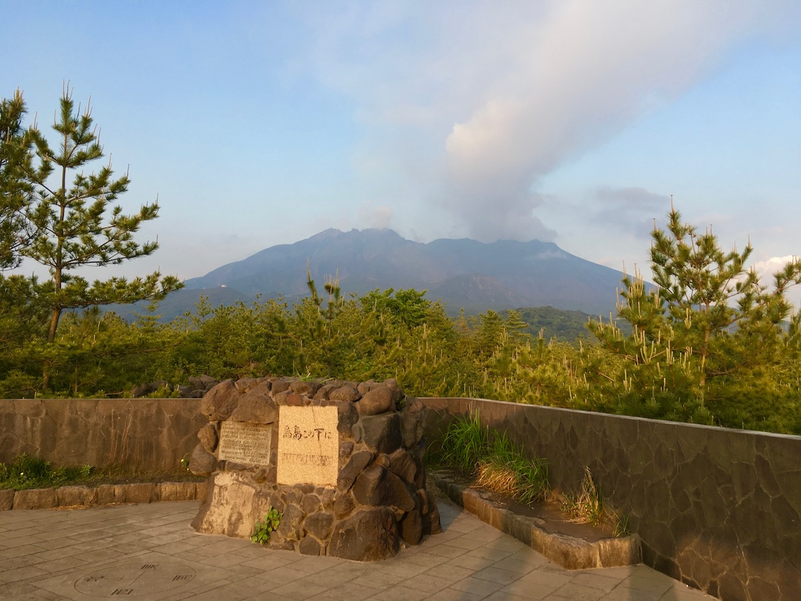 Karasujima Observatory | Little Miss Turtle