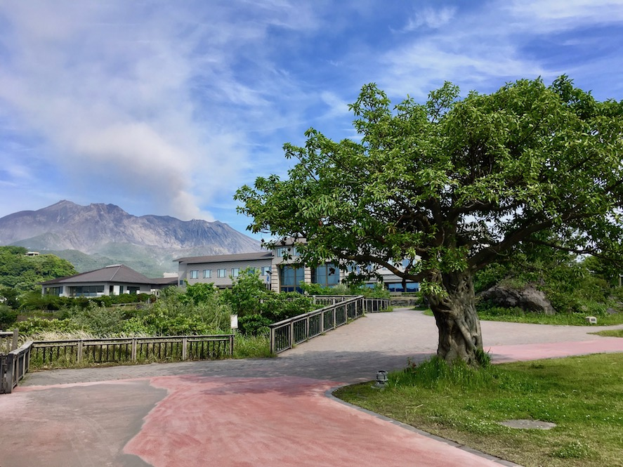 Yogan Nagisa Beach Park | Little Miss Turtle