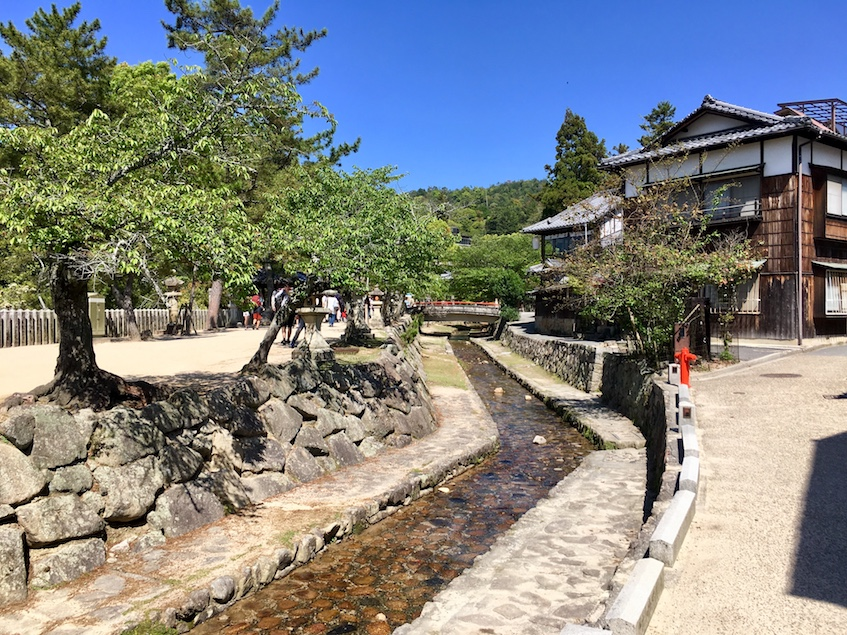 Way to Itsukushima Shrine Town | Little Miss Turtle