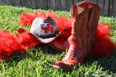 Houston, Houston Cougars, UH Coogs, Go Coogs