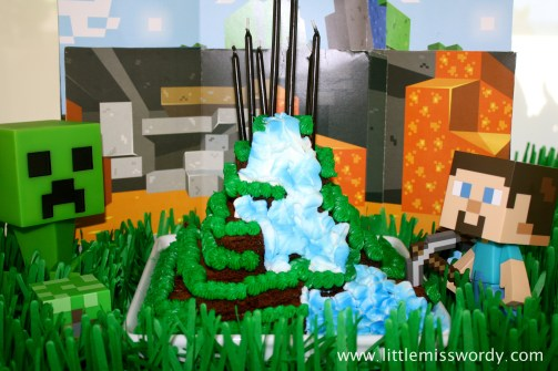 MineCraft, Creeper Cake, Birthday Cake
