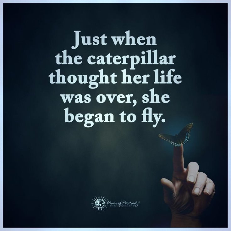 600 Inspirational Life Quotes To Motivate You Every Day 319