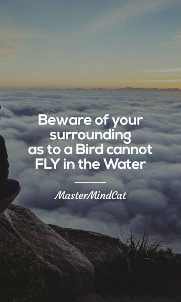 79 Inspirational Quotes That Will Change Your Life Page 8 Of 11