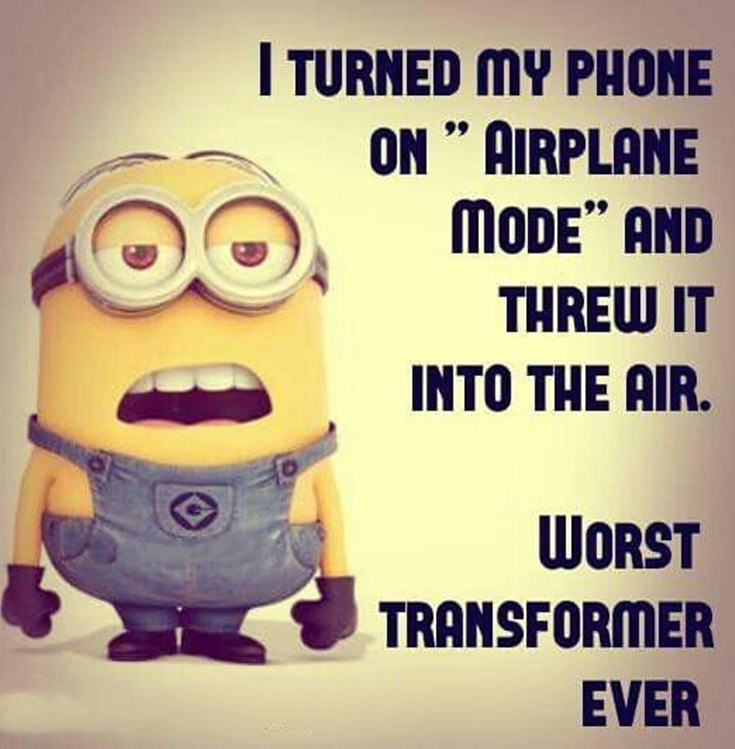 55 Funny Minion Quotes You Need to Read 23