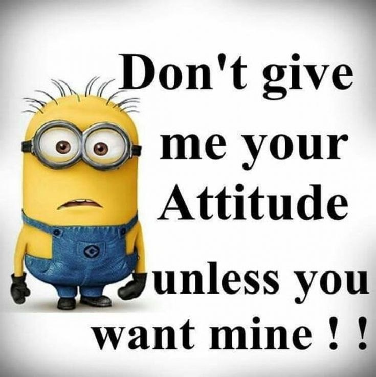55 Funny Minion Quotes You Need to Read 35
