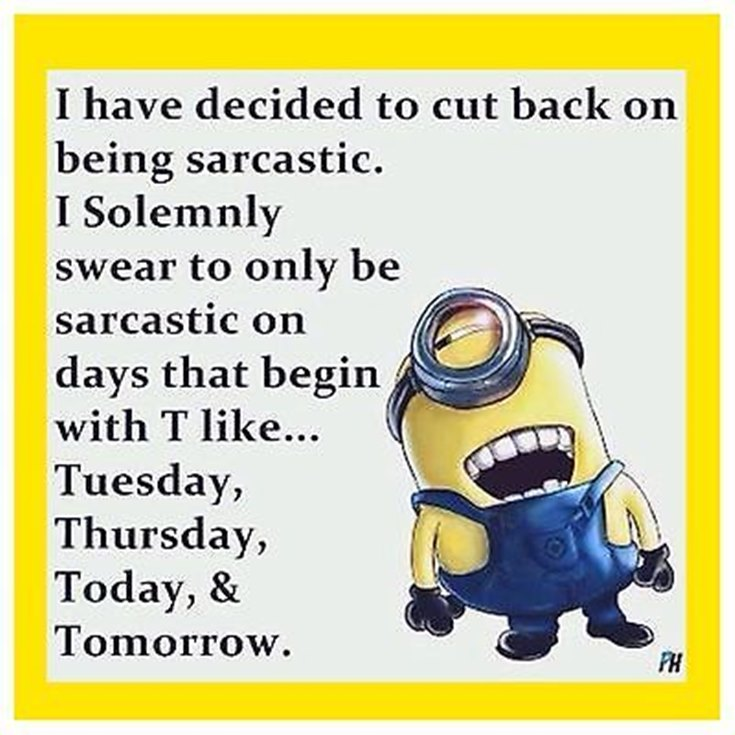 55 Funny Minion Quotes You Need to Read 40