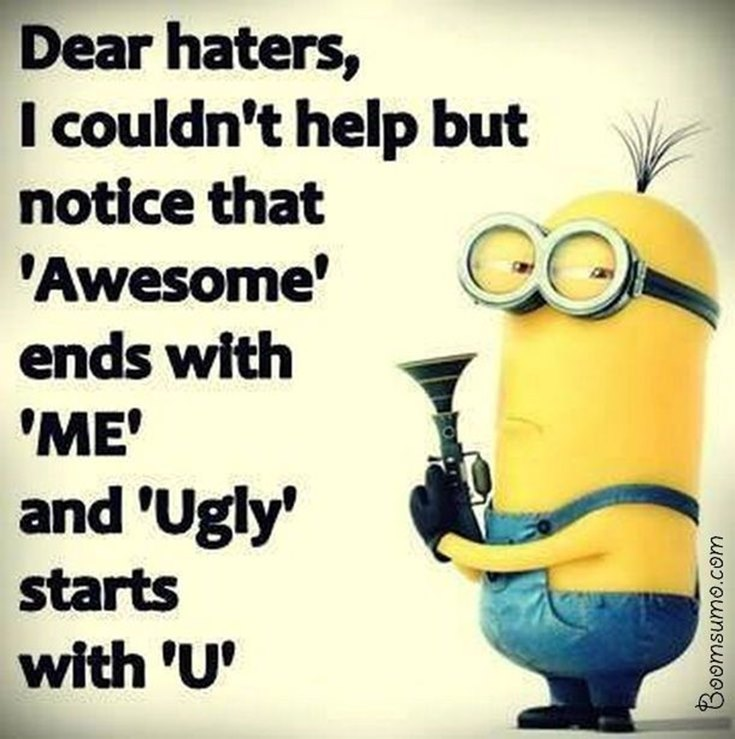 55 Funny Minion Quotes You Need to Read 43