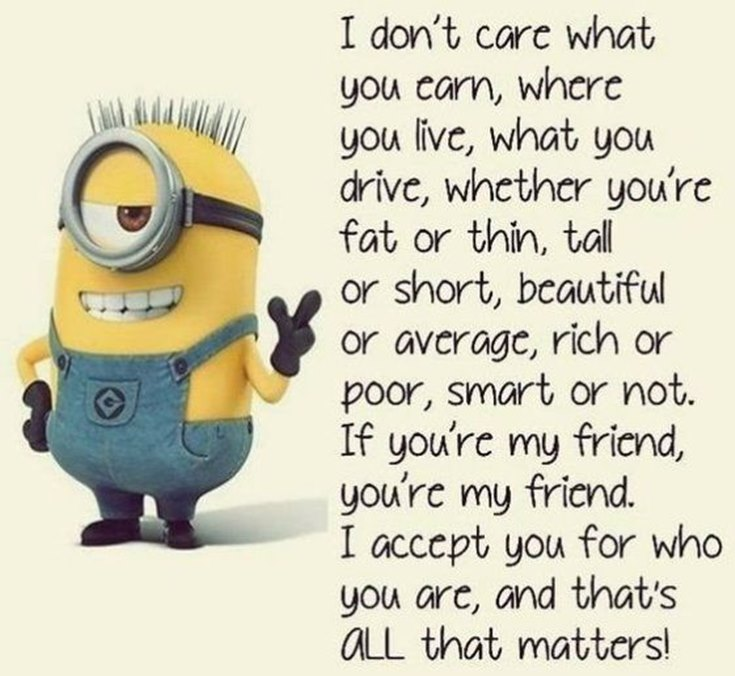 55 Funny Minion Quotes You Need to Read 45