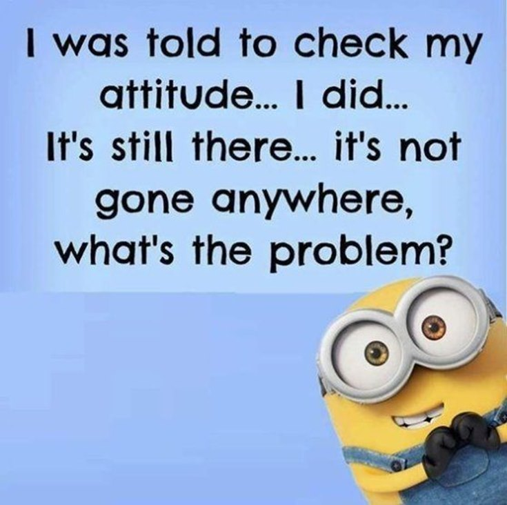 55 Funny Minion Quotes You Need to Read 51