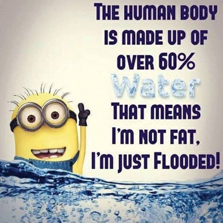 55 Funny Minion Quotes You Need to Read 53