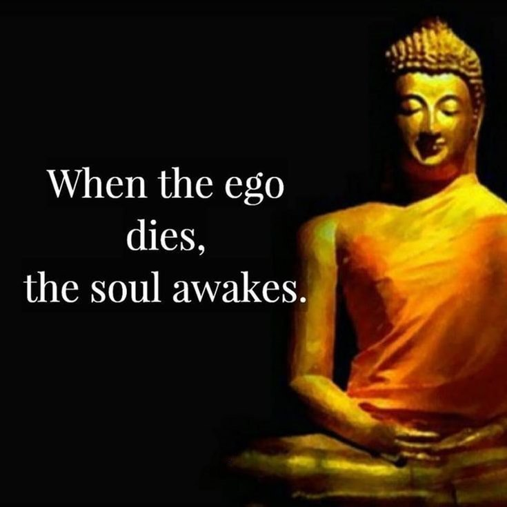 100 Inspirational Buddha Quotes And Sayings That Will Enlighten You 15
