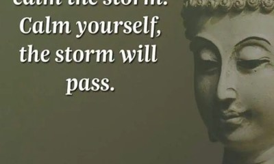 100 Inspirational Buddha Quotes And Sayings That Will Enlighten You 39