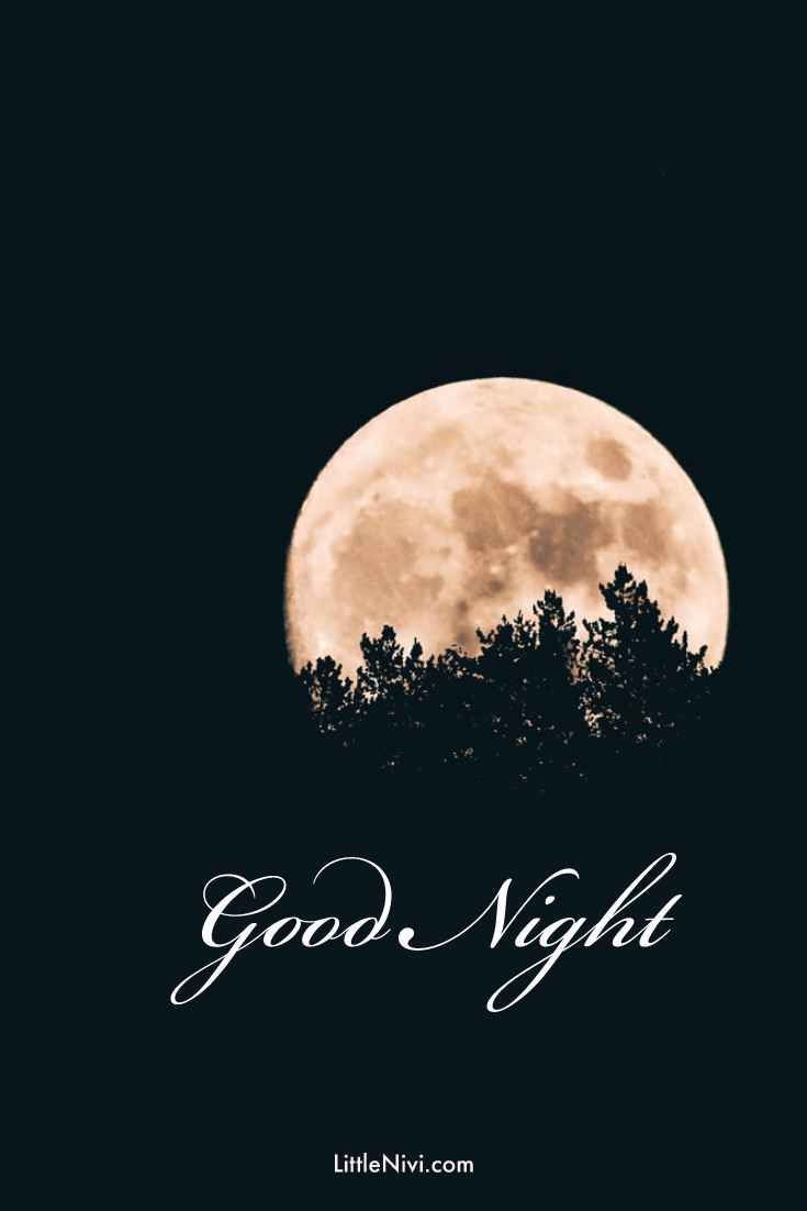 30 Amazing Good Night Quotes and Wishes with Beautiful Images 4
