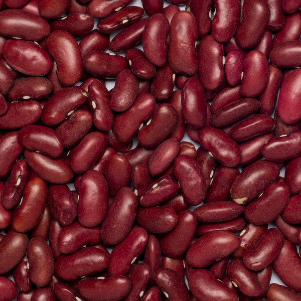 Beans Red Kidney Organic Little Plant Pantry Online Store