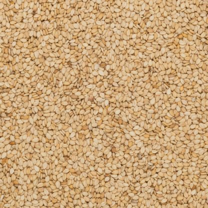 Close up of sesame seeds organic.