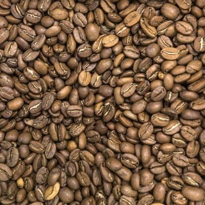 coffee medium roast organic amsterdam