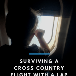 Surviving a Long Flight With a Lap Toddler…Alone!