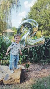 toddlers-turning two-second birthday-two years old-animal party