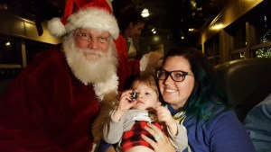 silver sleigh bells-santa claus-polar express