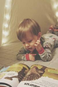 newton baby mattress-crib mattress-reading nook-