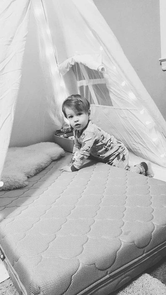 newton baby-crib mattress-toddler bed