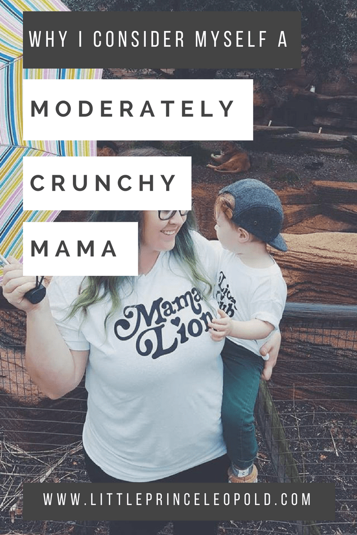 moderately crunchy-scrunchy-granola-mommycon-motherhood-mom life-where i stand