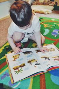animal books-kids literature-childrens book-books about animals-illustrated books-animal lover-book review-toddlers-