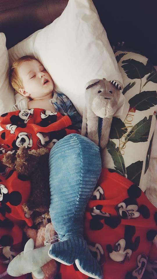 whisbear-sleeping babies-toddler sleep-newborn sleep