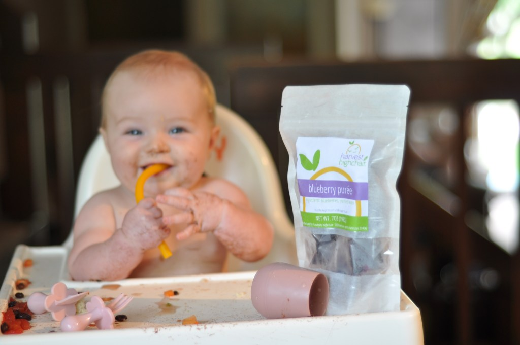 harvest to highchair baby food delivery purees baby led weaning charleston south carolina