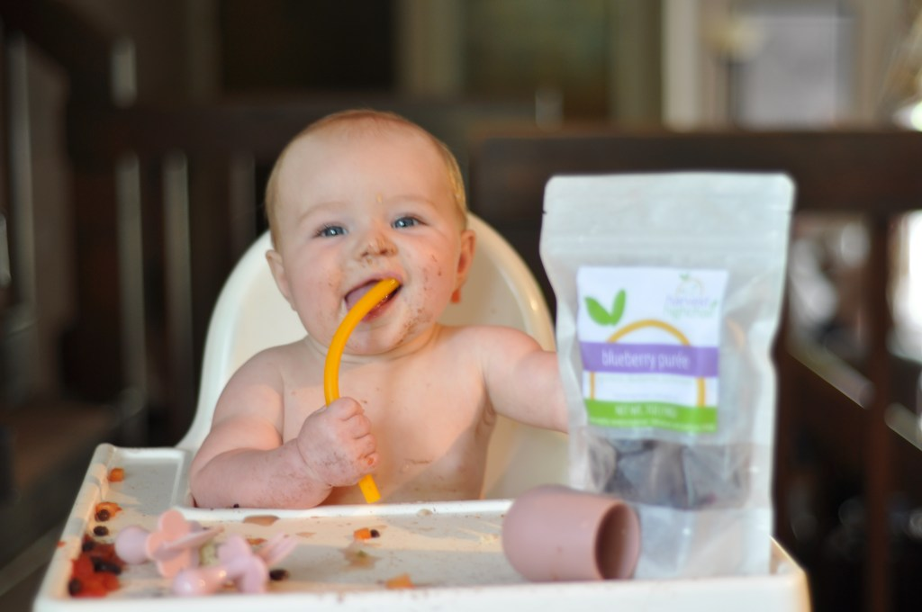 frozen baby food organic purees harvest to high chair starting solids baby in high chair