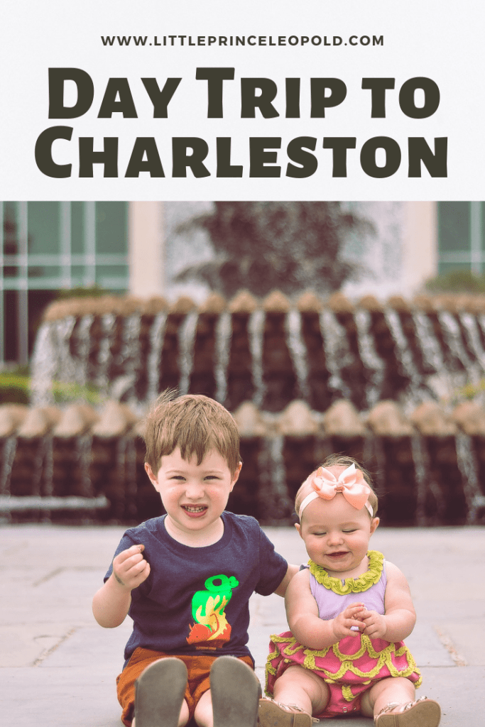 charleston-day trips in the lowcountry-coastal south carolina-