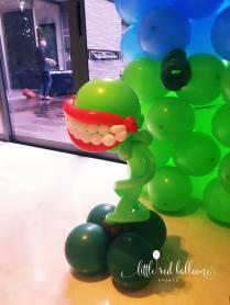 balloon-venus-vine-trap