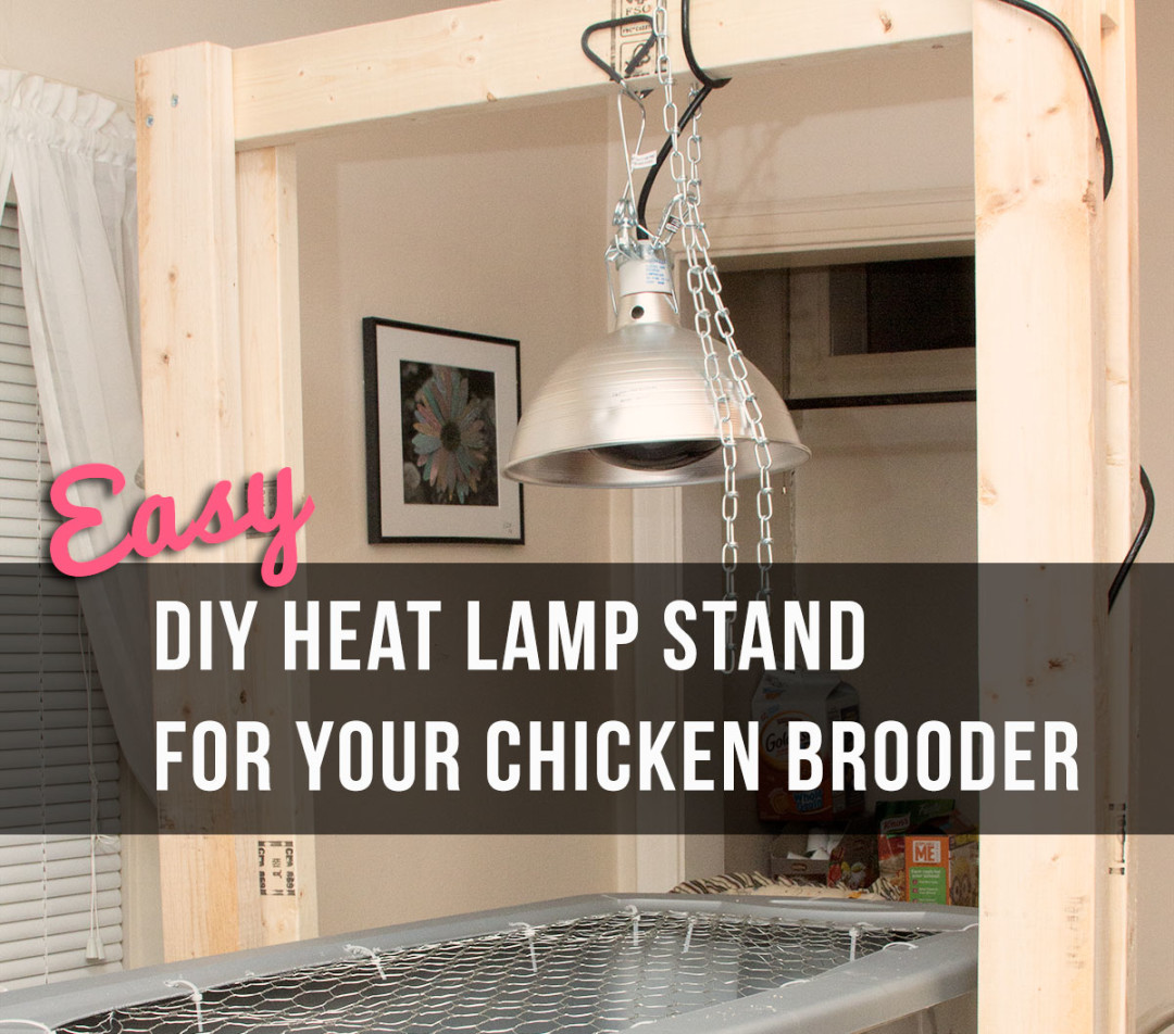 Easy DIY Heat Lamp Stand For Your Chicken Brooder Little