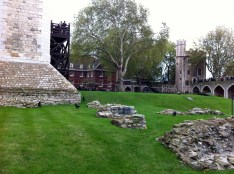 The famous Ravens at Tower of London. http://en.wikipedia.org/wiki/Ravens_of_the_Tower_of_London
