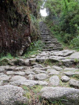 Inca Trail - Just hiked down these flight of stairs.