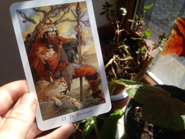 The Woodward Wildwood Tarot