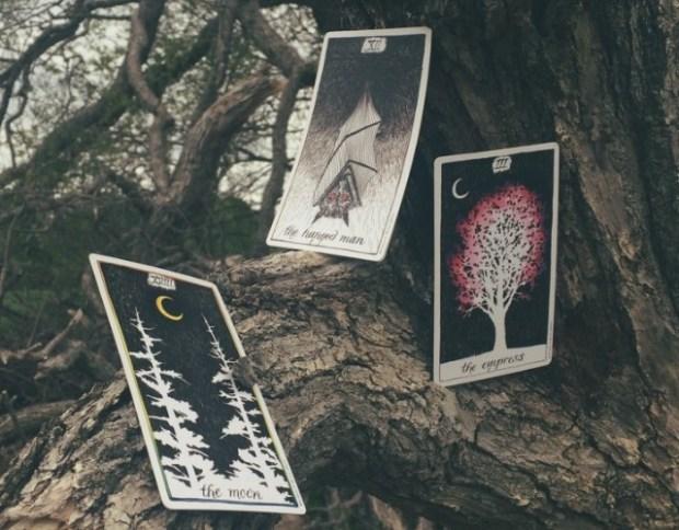 viewofcards