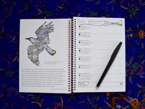 earth-pathways-diary35