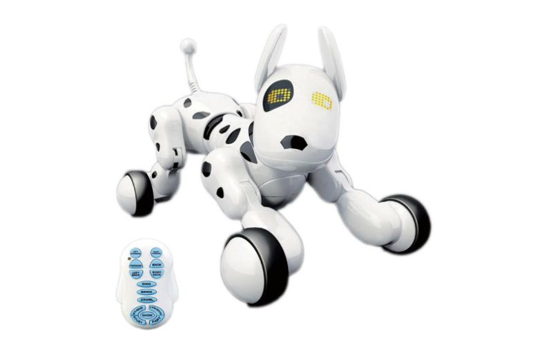 Robot companion for kids