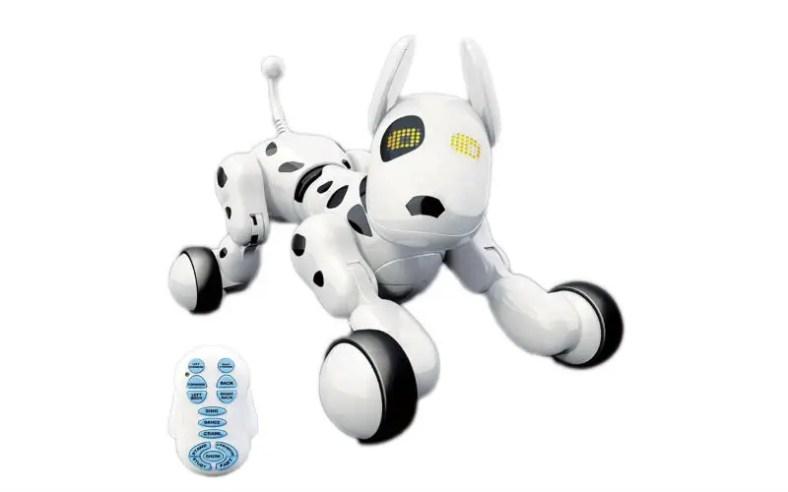 Robot companion for kids